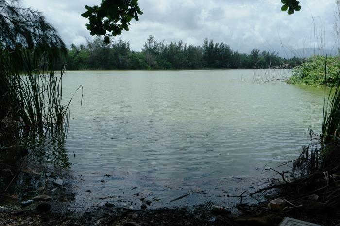 Recorrido por lago artificial enLoíza